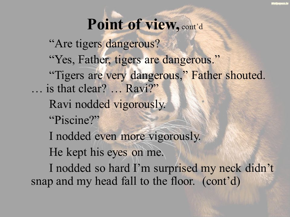 Point of view, cont'd Are tigers dangerous.