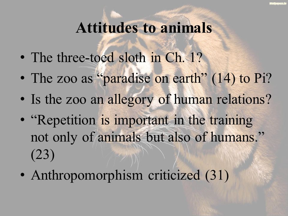 Attitudes to animals The three-toed sloth in Ch. 1.