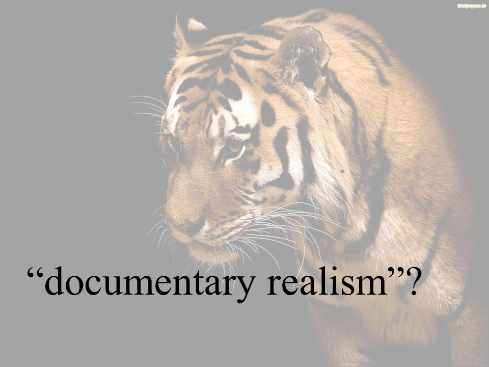 documentary realism ?