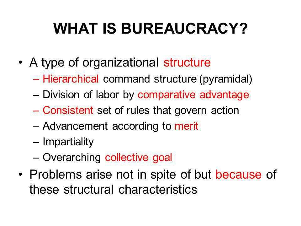 WHAT IS BUREAUCRACY.