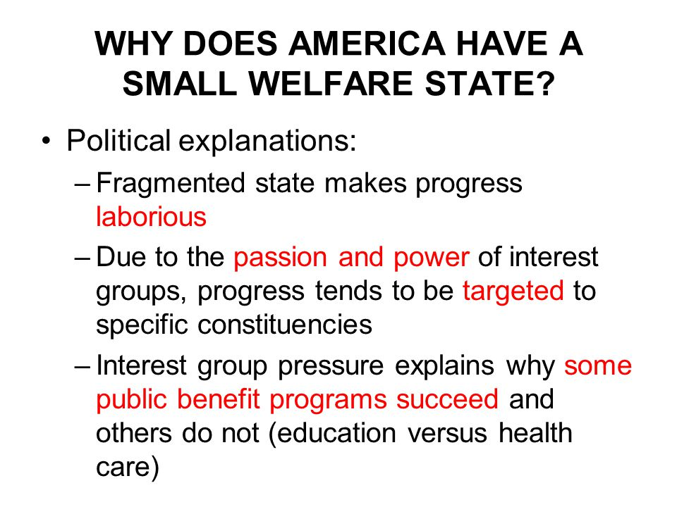 WHY DOES AMERICA HAVE A SMALL WELFARE STATE.