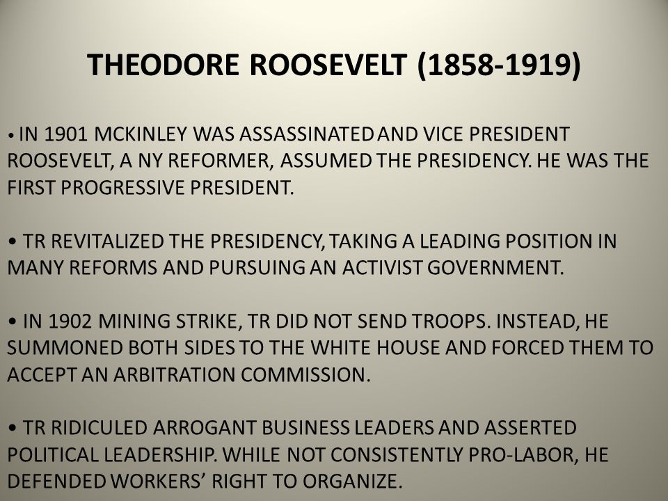 IN 1901 MCKINLEY WAS ASSASSINATED AND VICE PRESIDENT ROOSEVELT, A NY REFORMER, ASSUMED THE PRESIDENCY.