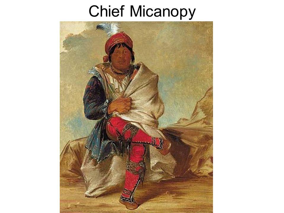 Chief Micanopy