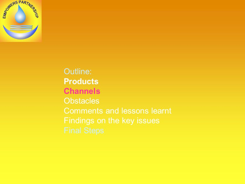 Outline: Products Channels Obstacles Comments and lessons learnt Findings on the key issues Final Steps