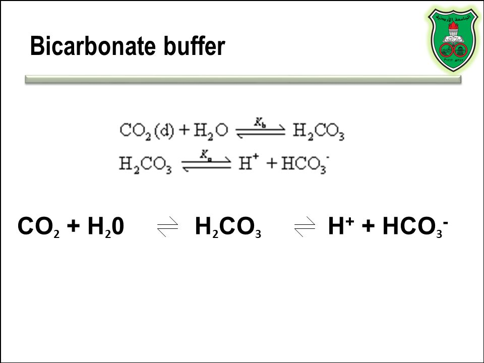 Bicarbonate buffer CO 2 + H 2 0H 2 CO 3 H + + HCO 3 -