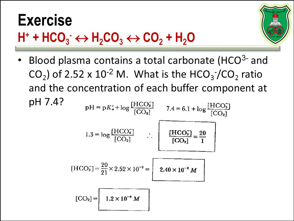 Exercise H + + HCO 3 -  H 2 CO 3  CO 2 + H 2 O Blood plasma contains a total carbonate (HCO 3- and CO 2 ) of 2.52 x 10 -2 M. What is the HCO 3 - /CO