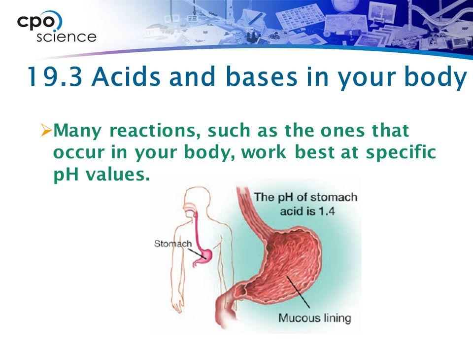 19.3 Acids and bases in your body  Many reactions, such as the ones that occur in your body, work best at specific pH values.