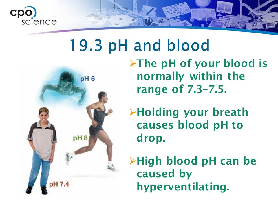 19.3 pH and blood  The pH of your blood is normally within the range of 7.3–7.5.  Holding your breath causes blood pH to drop.  High blood pH can b