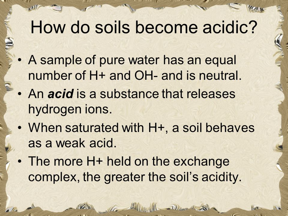 How do soils become acidic? A sample of pure water has an equal number of H+ and OH- and is neutral. An acid is a substance that releases hydrogen ion