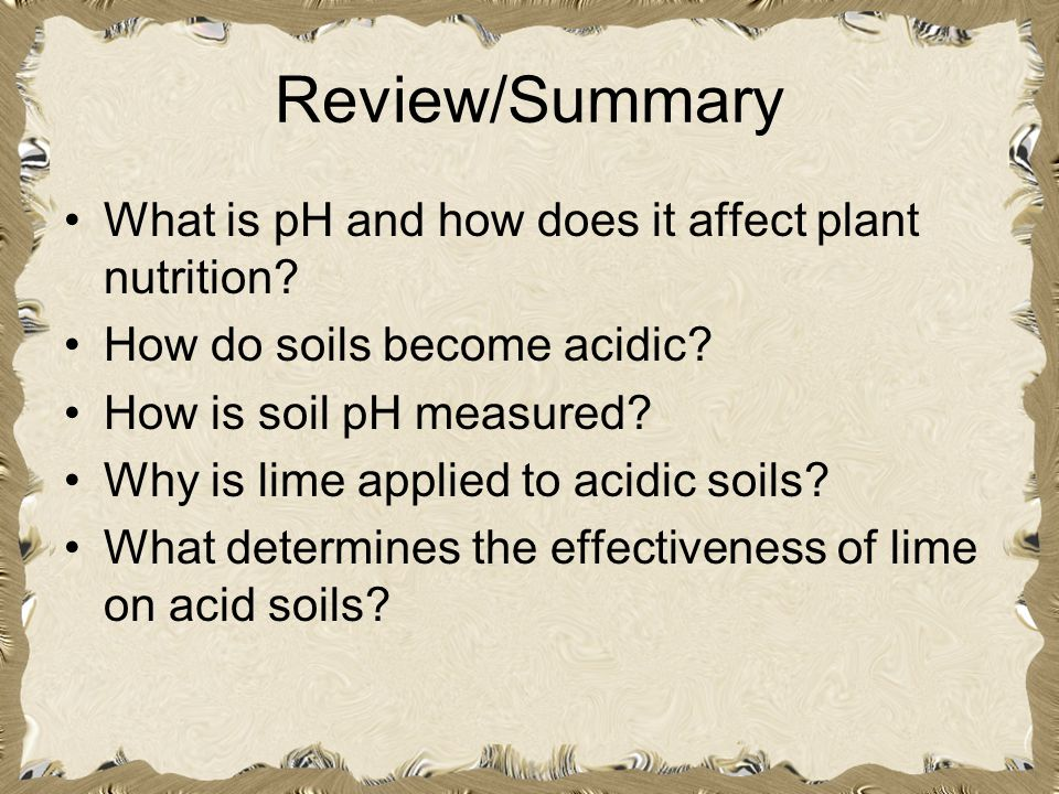 Review/Summary What is pH and how does it affect plant nutrition? How do soils become acidic? How is soil pH measured? Why is lime applied to acidic s