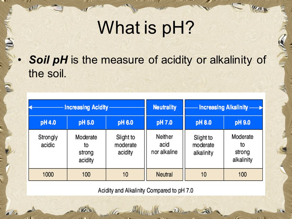 What is pH? Soil pH is the measure of acidity or alkalinity of the soil.
