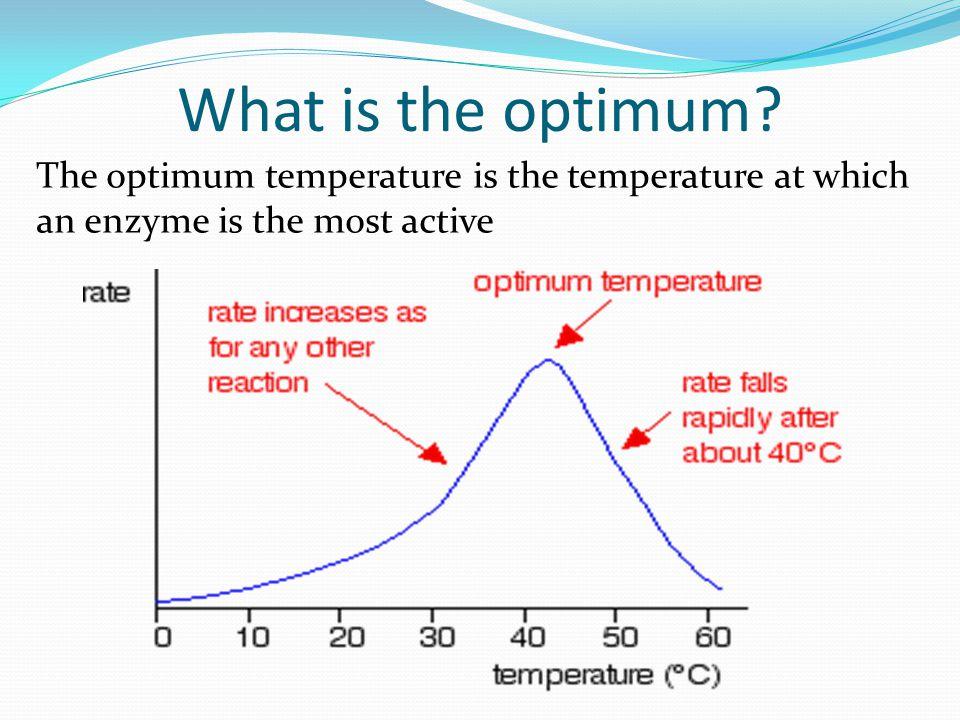What is the optimum.