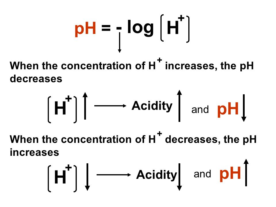 H pH = + - log When the concentration of H increases, the pH decreases + When the concentration of H decreases, the pH increases + H + Acidity pH and