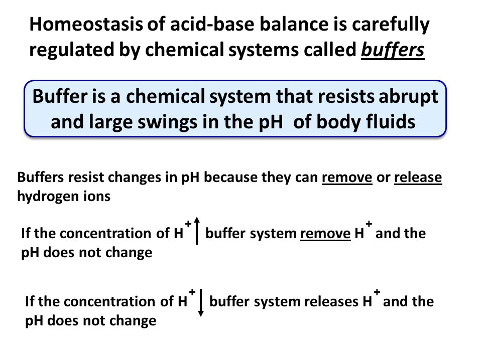 Buffers resist changes in pH because they can remove or release hydrogen ions If the concentration of H buffer system remove H and the pH does not cha
