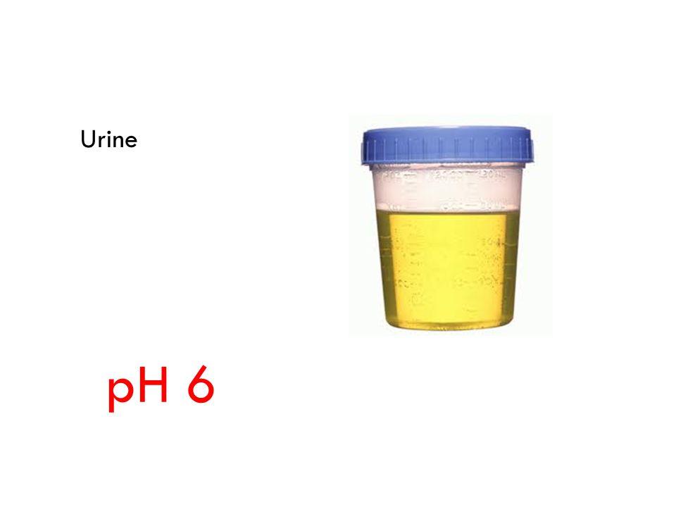 Urine pH 6