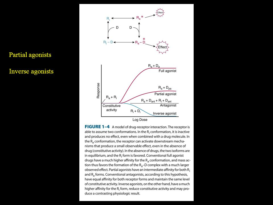 Partial agonists Inverse agonists