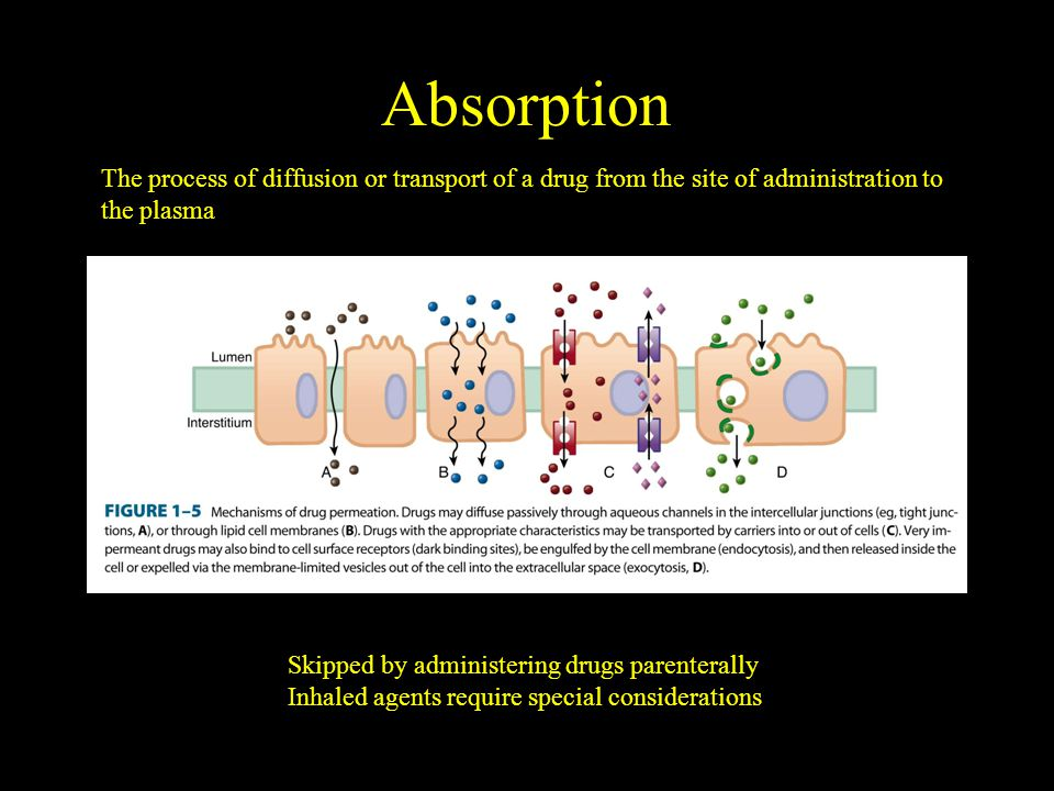 Absorption Skipped by administering drugs parenterally Inhaled agents require special considerations The process of diffusion or transport of a drug from the site of administration to the plasma