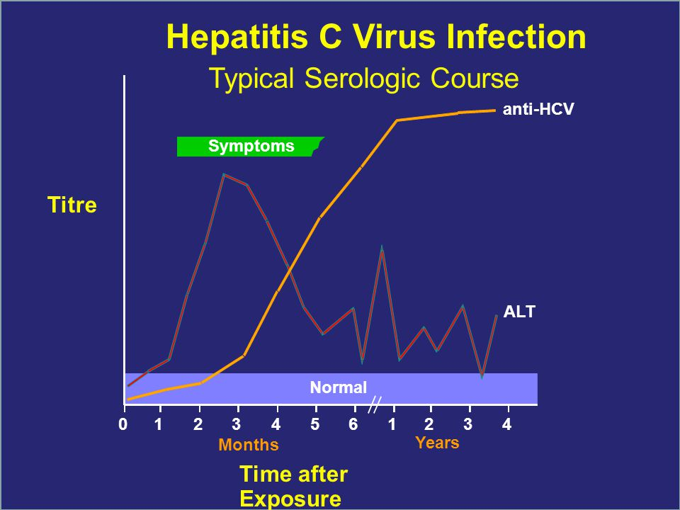 Symptoms anti-HCV ALT Normal 012345 61234 Hepatitis C Virus Infection Typical Serologic Course Titre Months Years Time after Exposure