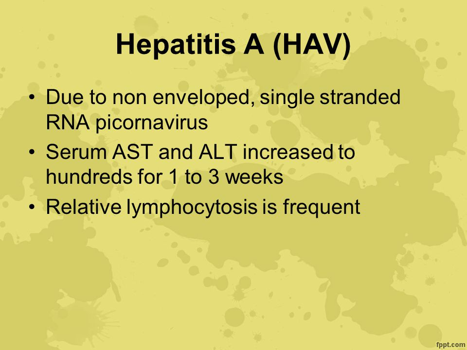 Hepatitis A (HAV) Due to non enveloped, single stranded RNA picornavirus Serum AST and ALT increased to hundreds for 1 to 3 weeks Relative lymphocytos