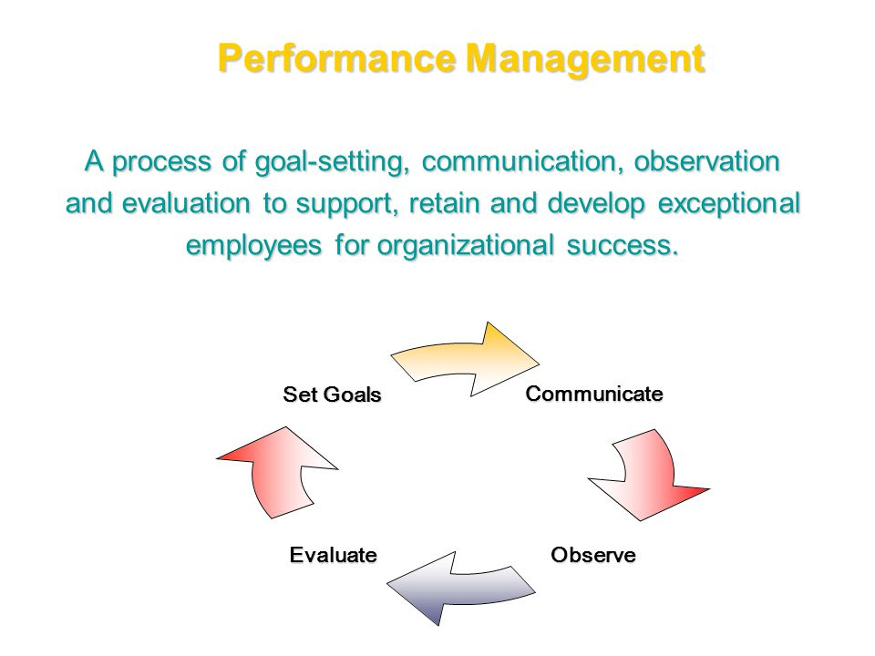 A process of goal-setting, communication, observation and evaluation to support, retain and develop exceptional employees for organizational success.