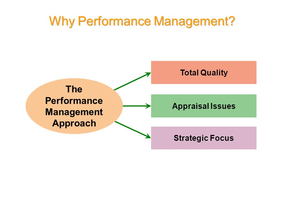 Basic Concepts in Performance Management and Appraisal Performance Appraisal: Setting work standards, assessing performance, and providing feedback to employees to motivate, correct, and continue their performance.