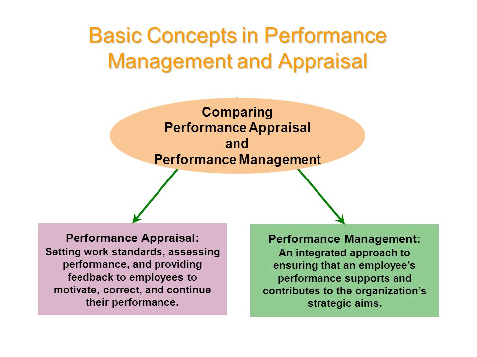 Basic Concepts in Performance Management and Appraisal Performance Appraisal: Setting work standards, assessing performance, and providing feedback to