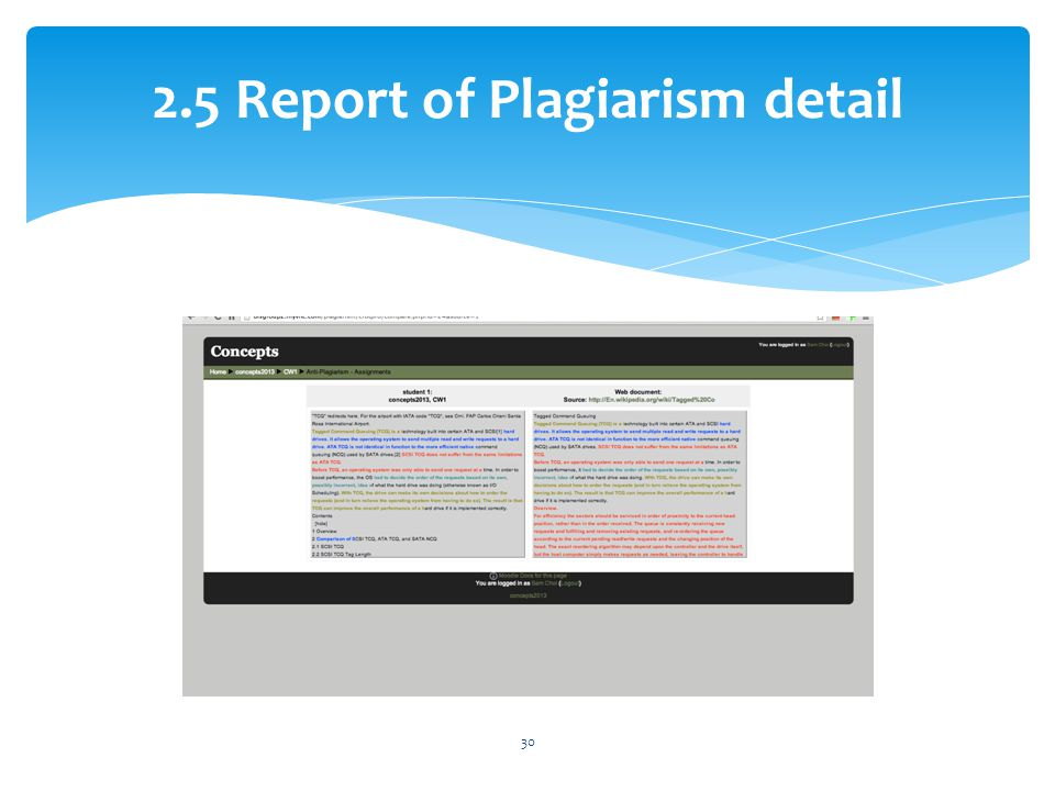2.5 Report of Plagiarism detail 30