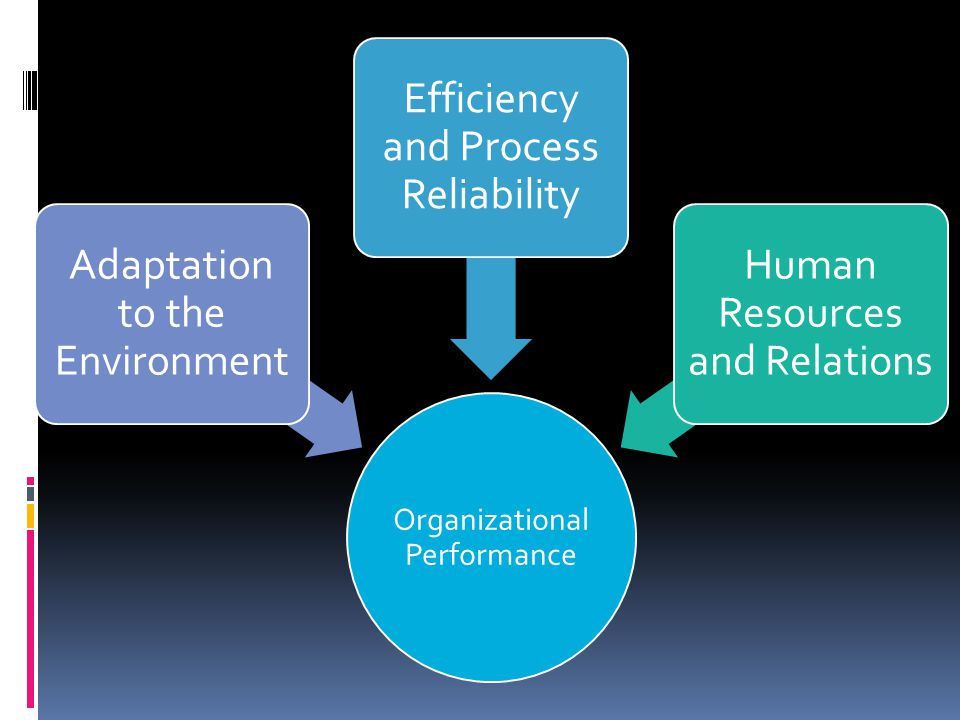 Organizational Performance Adaptation to the Environment Efficiency and Process Reliability Human Resources and Relations