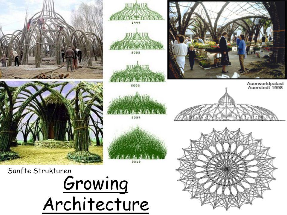 Growing Architecture Sanfte Strukturen