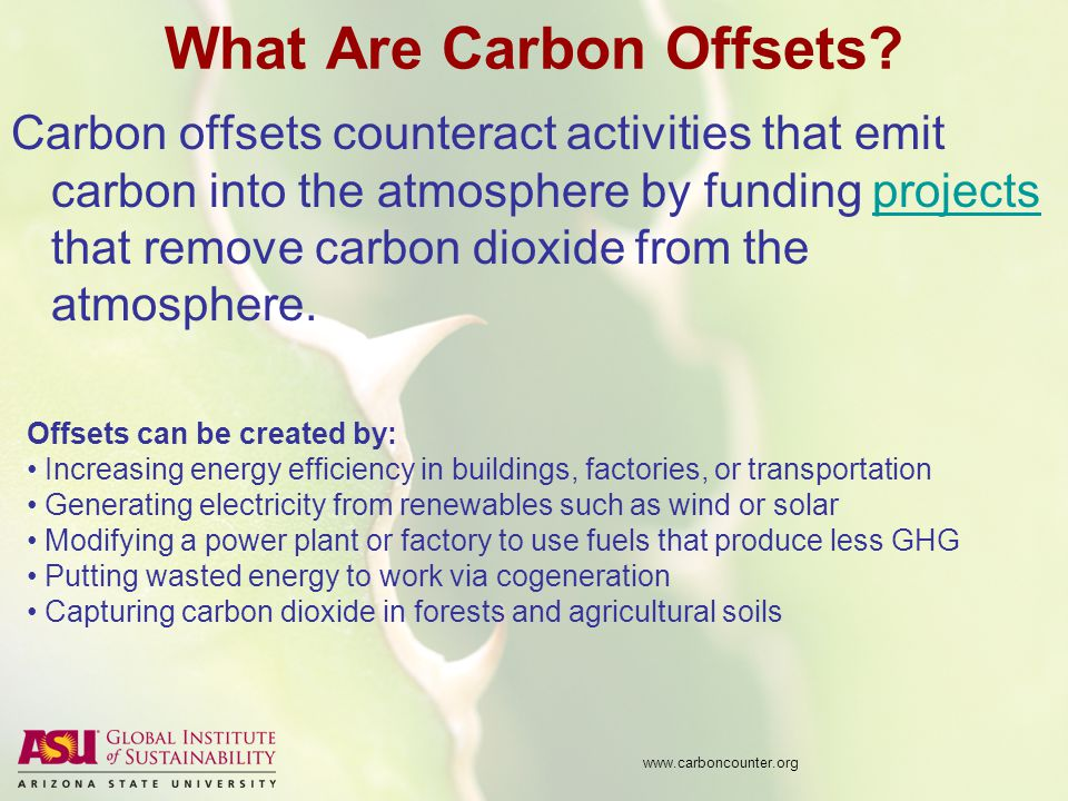 What Are Carbon Offsets.
