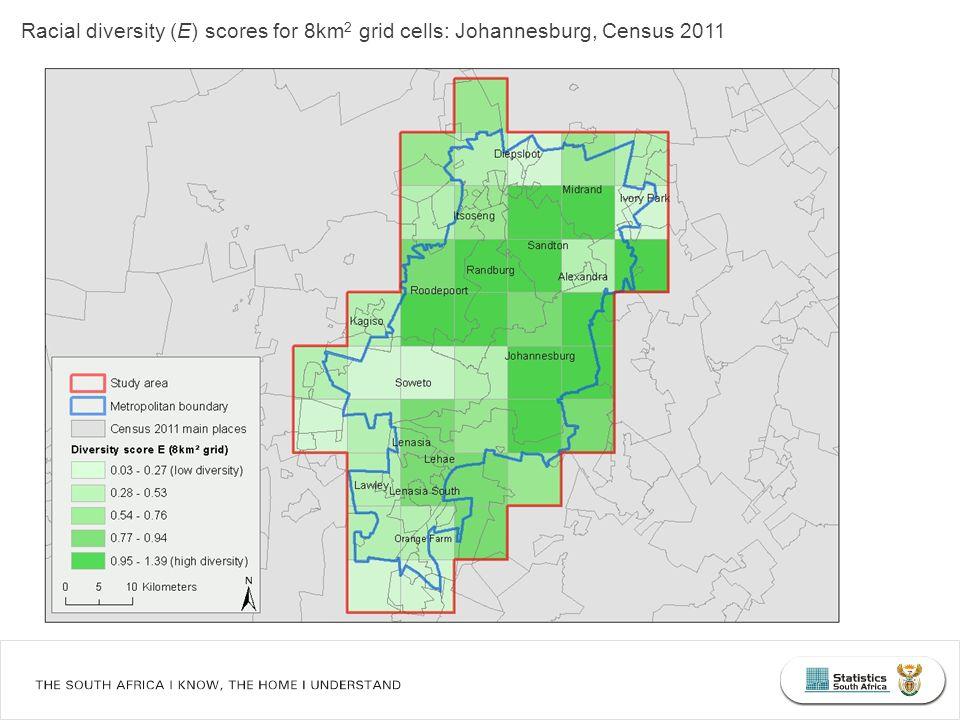 Racial diversity (E) scores for 8km 2 grid cells: Johannesburg, Census 2011