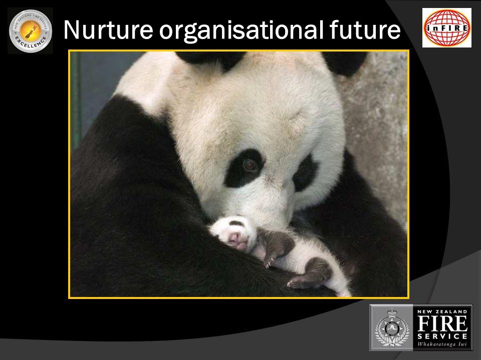 Nurture organisational future