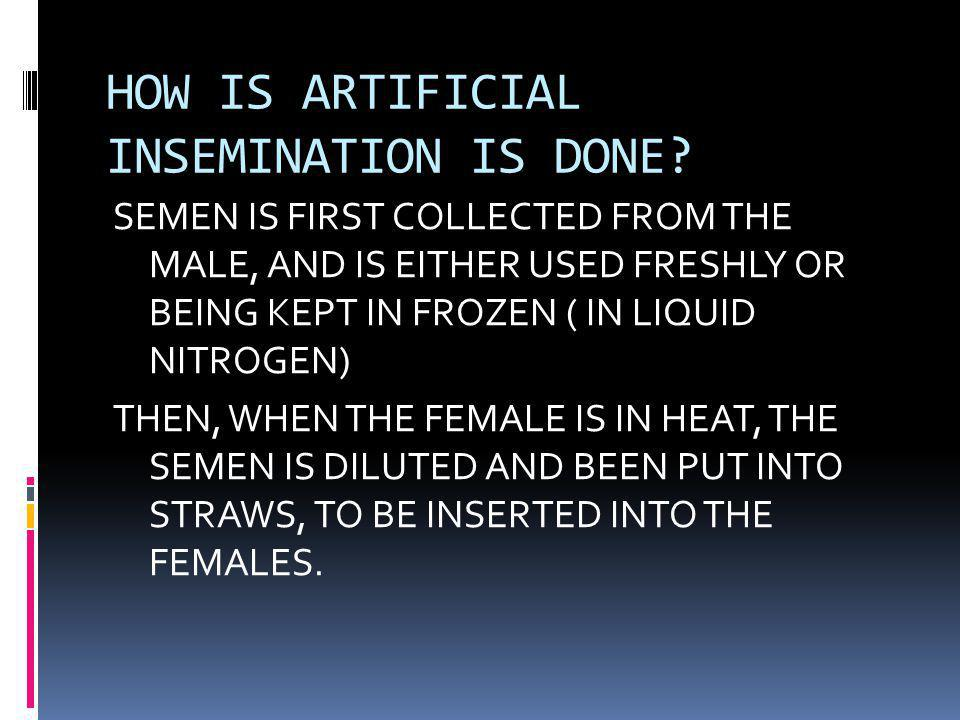 HOW IS ARTIFICIAL INSEMINATION IS DONE.