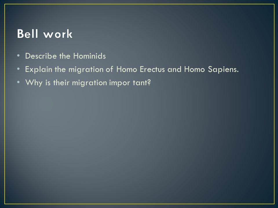 Describe the Hominids Explain the migration of Homo Erectus and Homo Sapiens. Why is their migration impor tant?