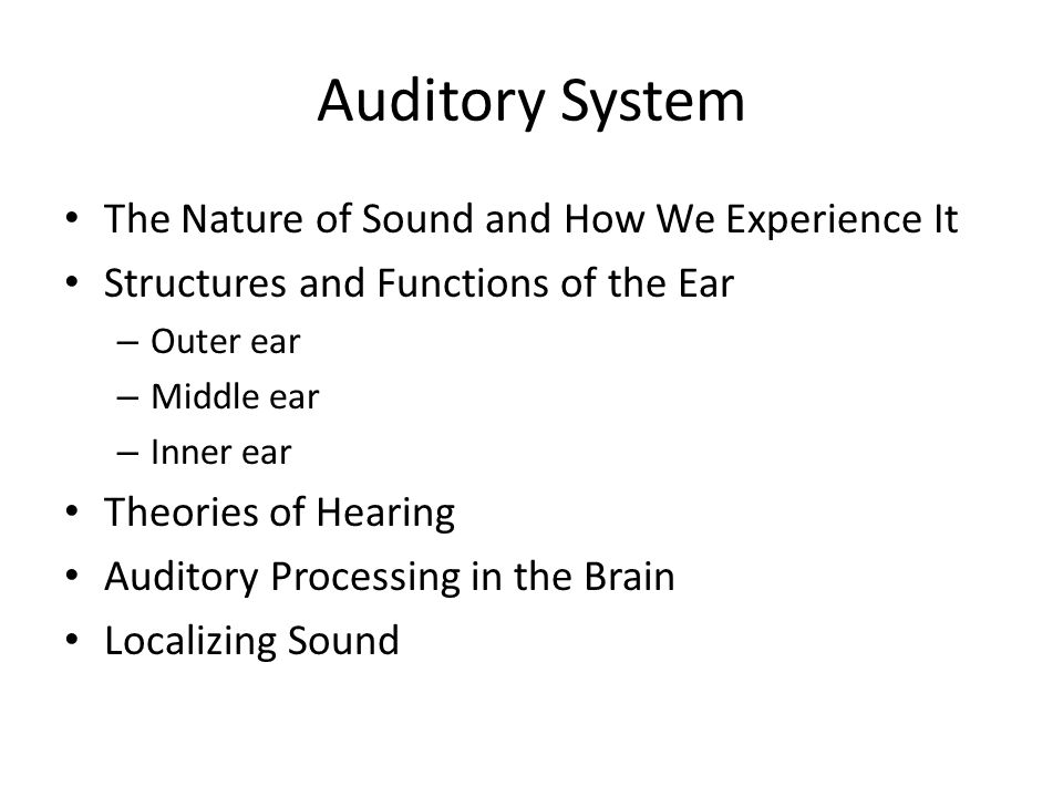 The Nature of Sound and How We Experience It sound waves – vibration in the air that are processed by the auditory (hearing) system – frequency – the number of cycles (full wavelengths) that pass through a point in a given time interval pitch – the perceptual interpretation of the frequency of a sound – complex sounds – sounds with numerous frequencies of sound blending together timbre – the tone saturation, or the perceptual quality, of a sound – Perceptual difference b/w different instruments playing the same note – amplitude – the amount of pressure the sound wave produces relative to a standard, typically 0 decibels-- measured in decibels (dB) loudness – the perception of the sound waves amplitude