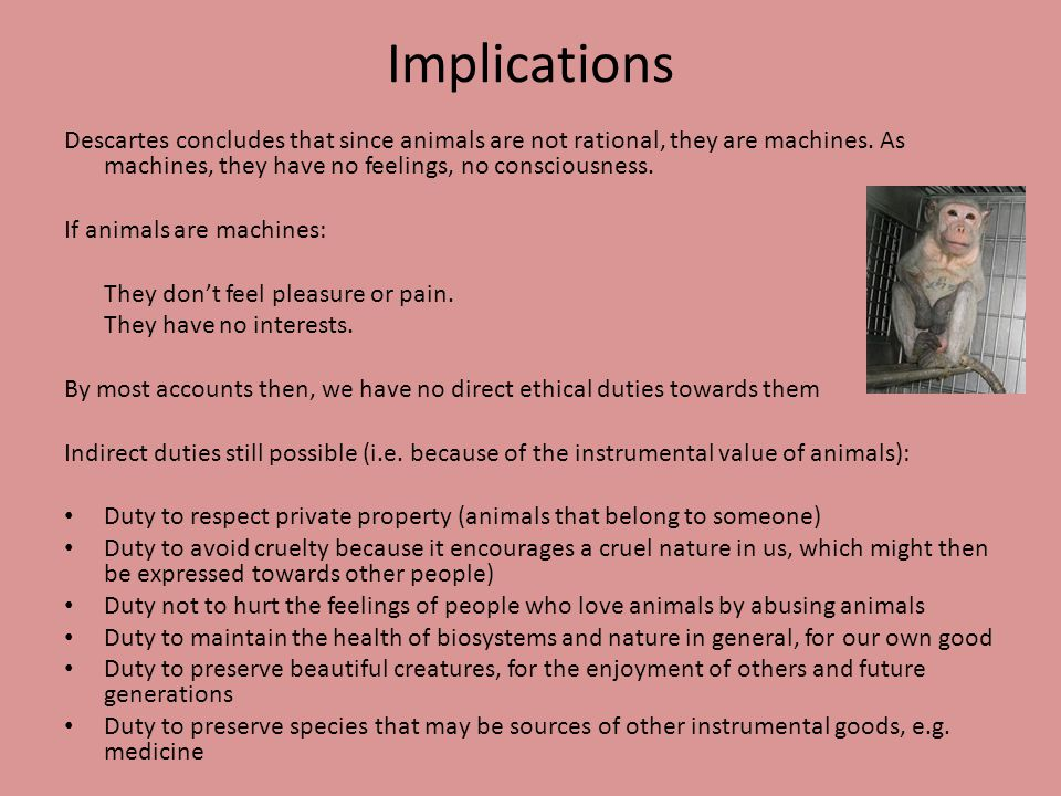 Implications Descartes concludes that since animals are not rational, they are machines.