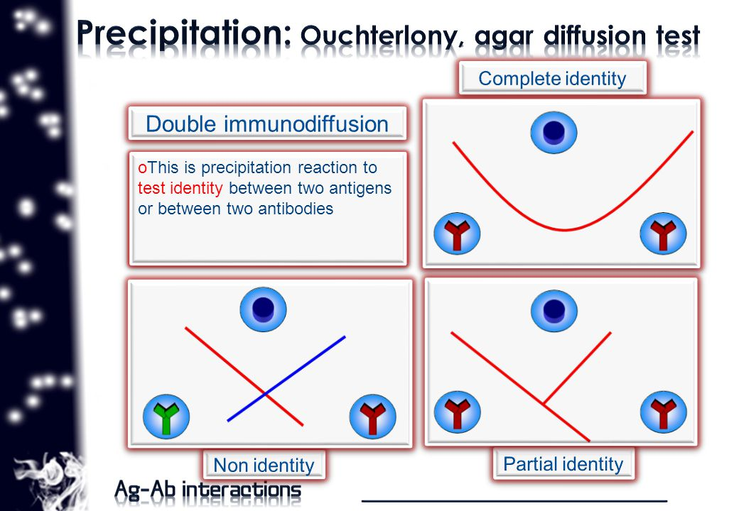 oThis is precipitation reaction to test identity between two antigens or between two antibodies