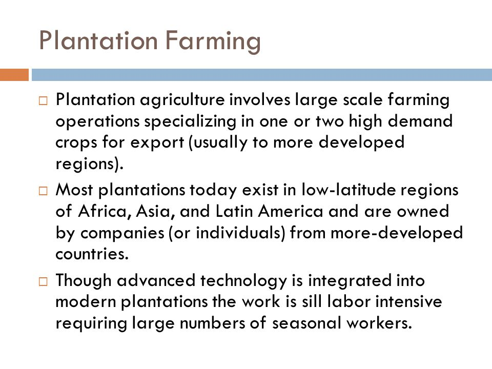 Plantation Farming  Plantation agriculture involves large scale farming operations specializing in one or two high demand crops for export (usually to more developed regions).