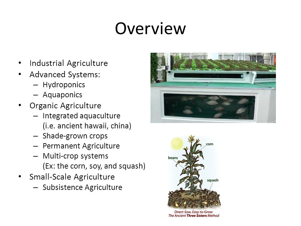 Overview Industrial Agriculture Advanced Systems: – Hydroponics – Aquaponics Organic Agriculture – Integrated aquaculture (i.e.