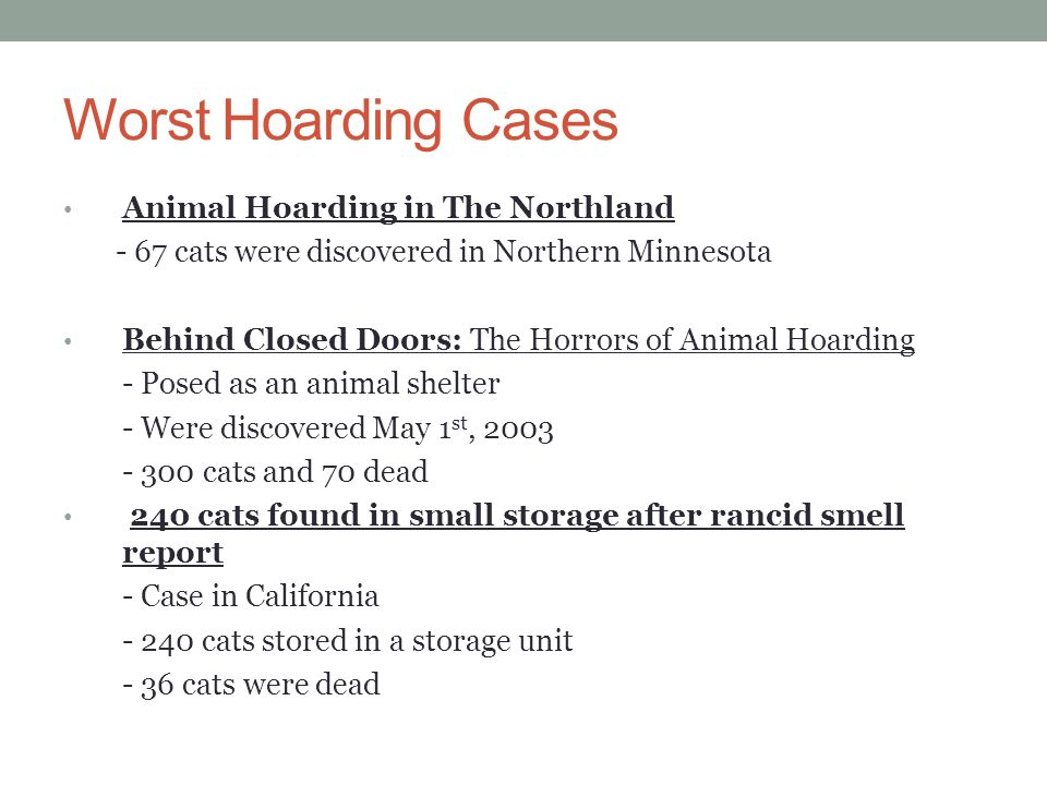 Worst Hoarding Cases Animal Hoarding in The Northland - 67 cats were discovered in Northern Minnesota Behind Closed Doors: The Horrors of Animal Hoard