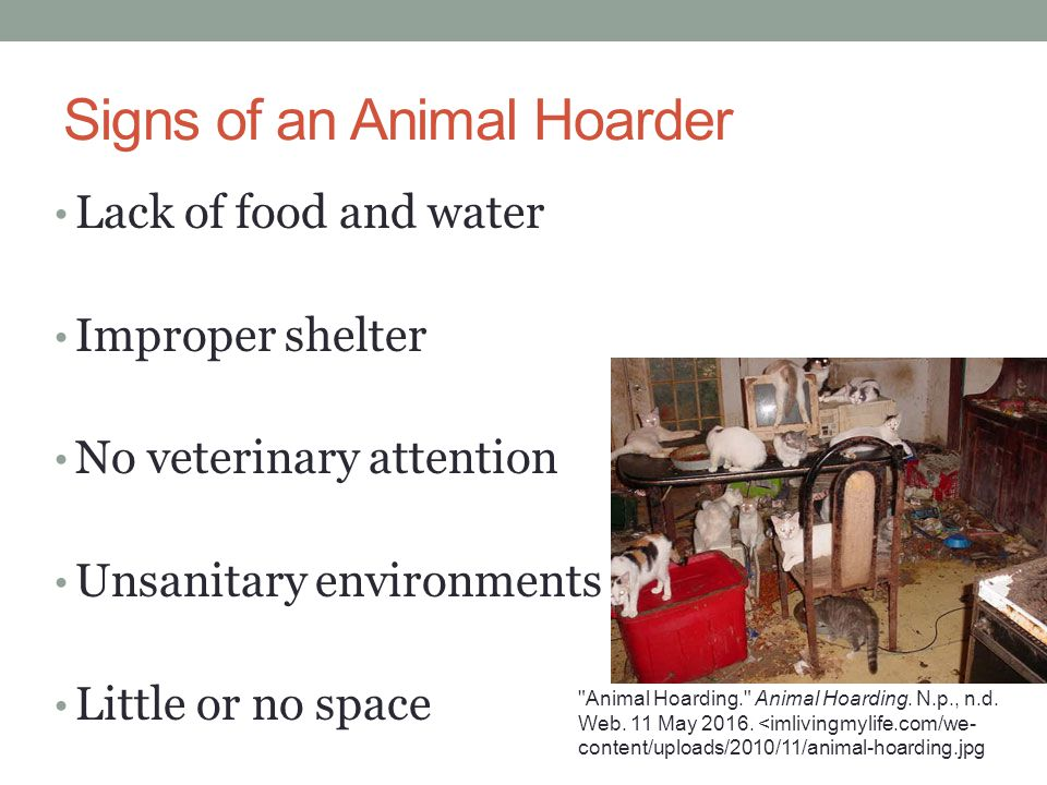 Signs of an Animal Hoarder Lack of food and water Improper shelter No veterinary attention Unsanitary environments Little or no space