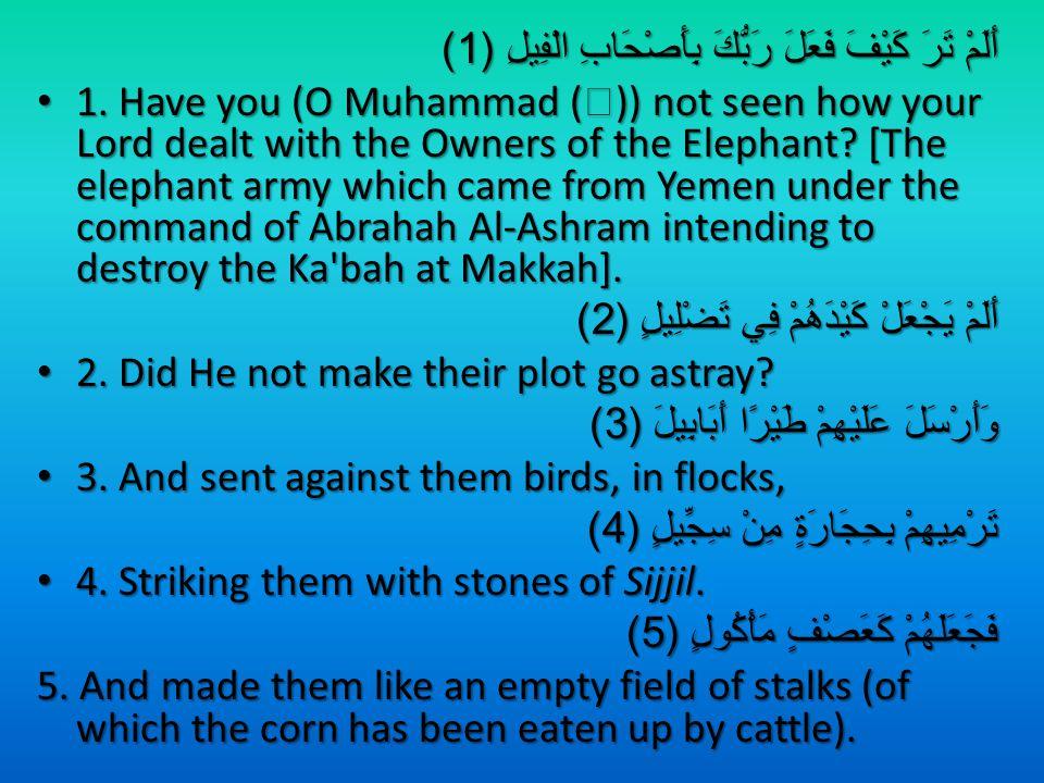 أَلَمْ تَرَ كَيْفَ فَعَلَ رَبُّكَ بِأَصْحَابِ الْفِيلِ (1) 1.