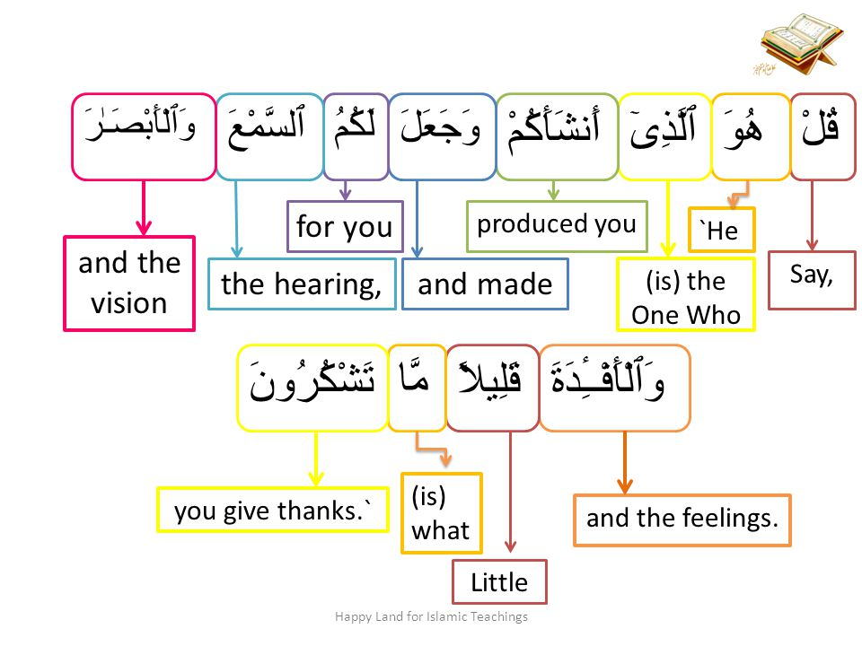 Happy Land for Islamic Teachings Say, It is He who has produced you and made for you hearing and vision and hearts; little are you grateful.