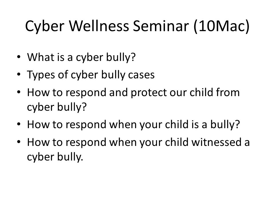 Cyber Wellness Seminar (10Mac) What is a cyber bully.