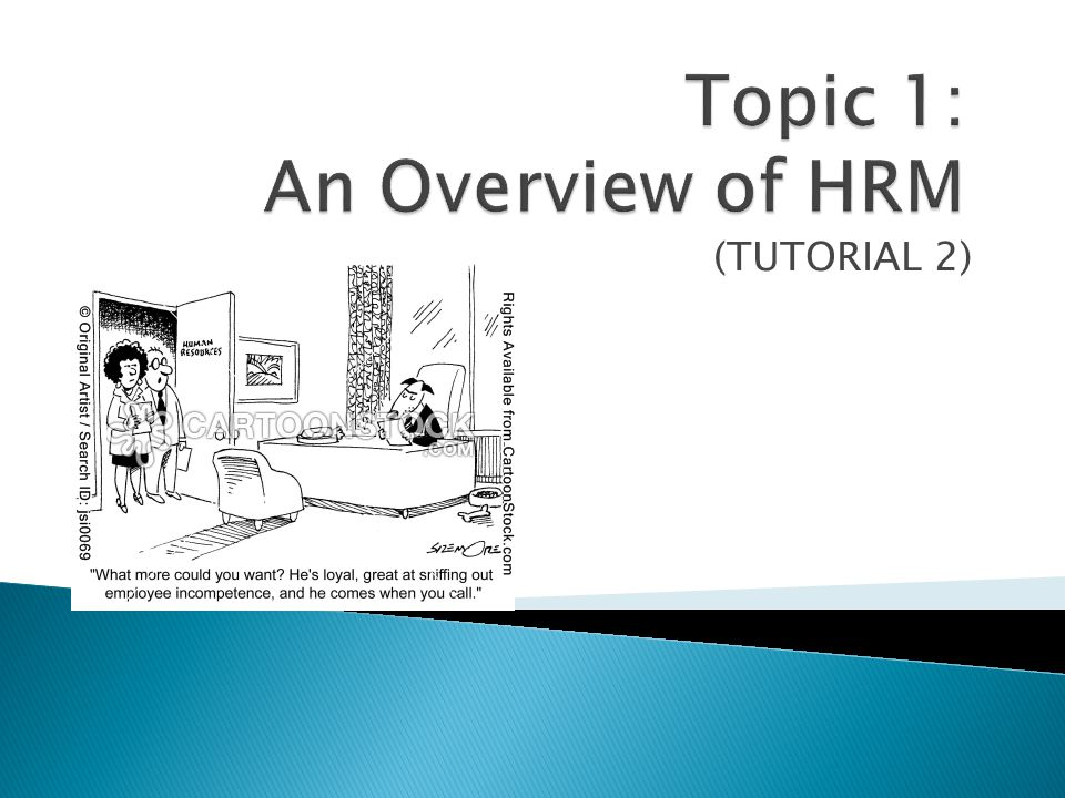 What are the careers in HR? Read! (book)