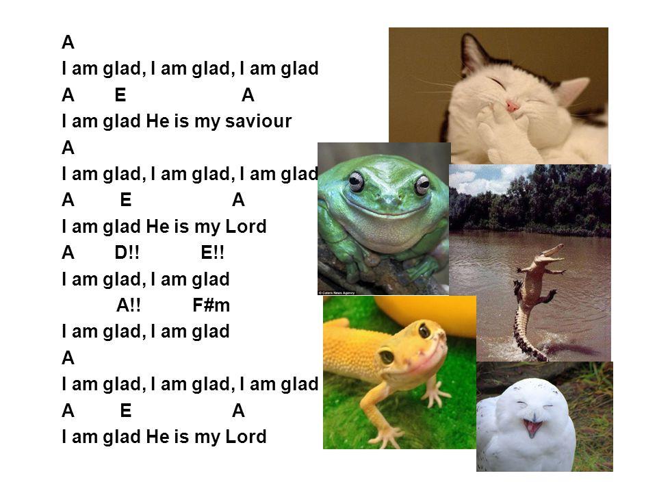 A I am glad, I am glad, I am glad A E A I am glad He is my saviour A I am glad, I am glad, I am glad A E A I am glad He is my Lord A D!! E!! I am glad
