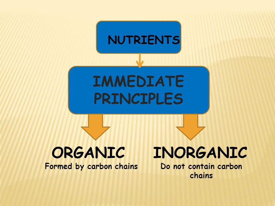 IMMEDIATE PRINCIPLES NUTRIENTS ORGANIC Formed by carbon chains INORGANIC Do not contain carbon chains