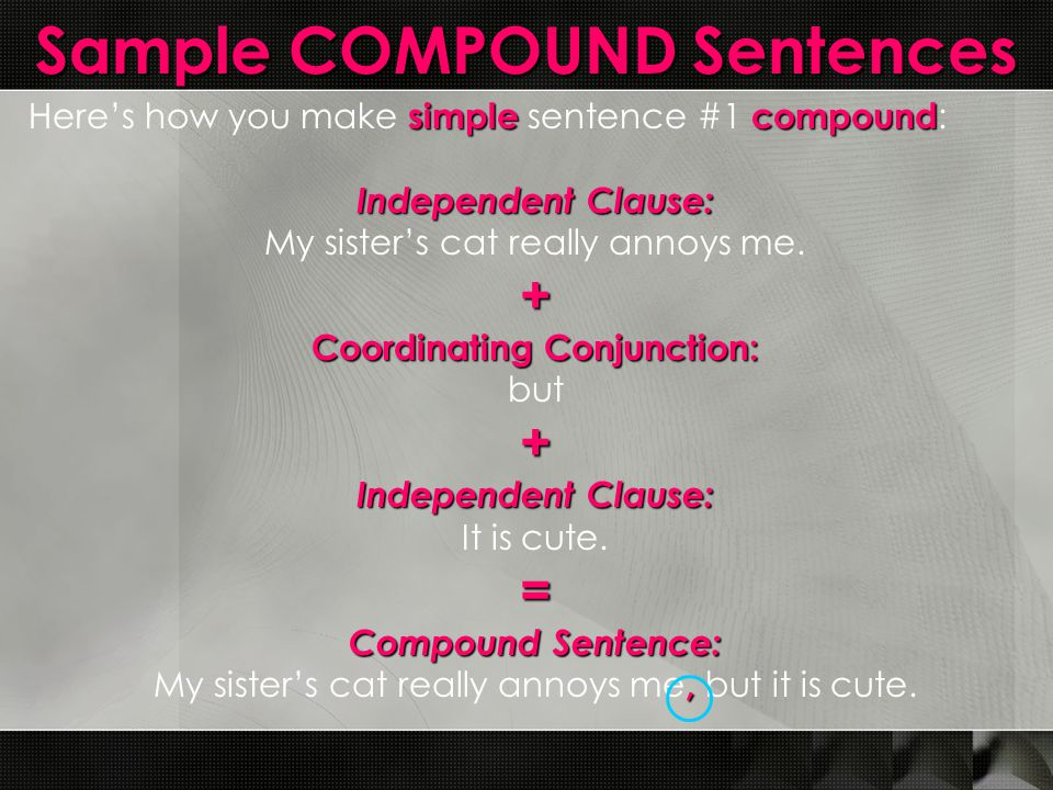 Sample COMPOUND Sentences simplecompound Here's how you make simple sentence #1 compound : Independent Clause: My sister's cat really annoys me.+ Coor
