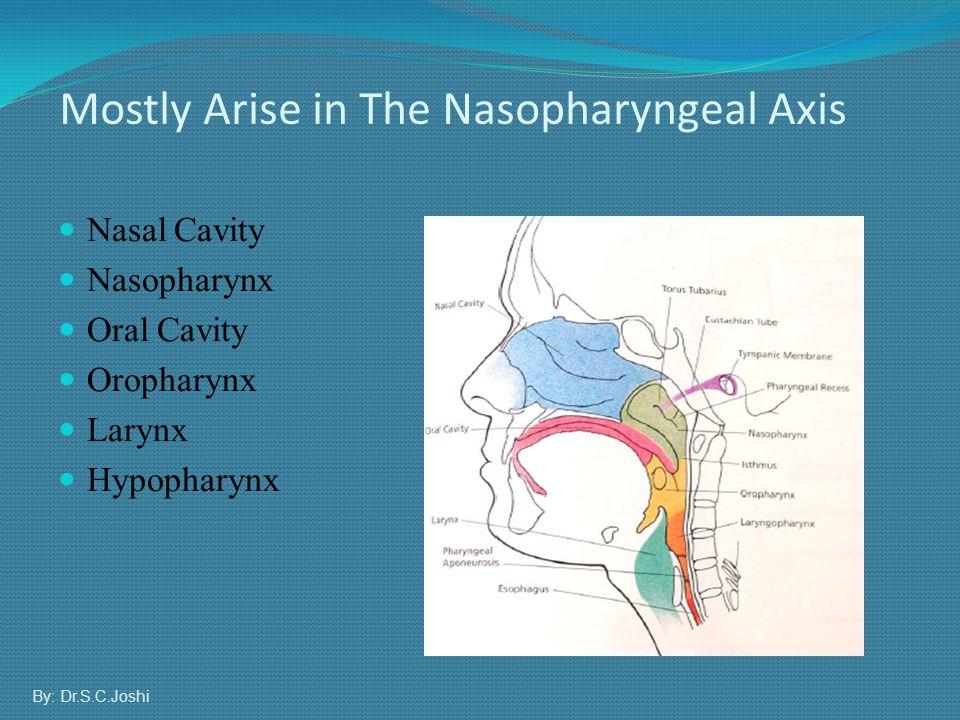 Nasal Cavity Nasopharynx Oral Cavity Oropharynx Larynx Hypopharynx Mostly Arise in The Nasopharyngeal Axis By: Dr.S.C.Joshi