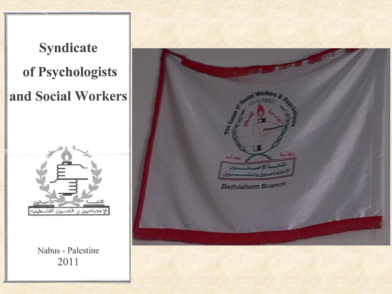 Issues facing social workers in Palestine - include...